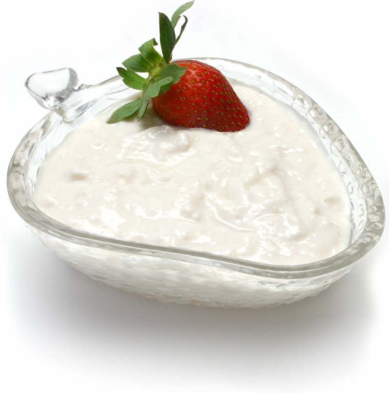 lactobacillus in yogurt - photo #25