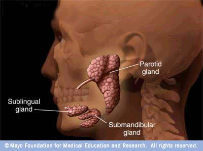 Mumps Symptoms,mumps,symptoms,