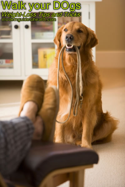 Weight-Loss Tips and Tricks: Walk your DOgs